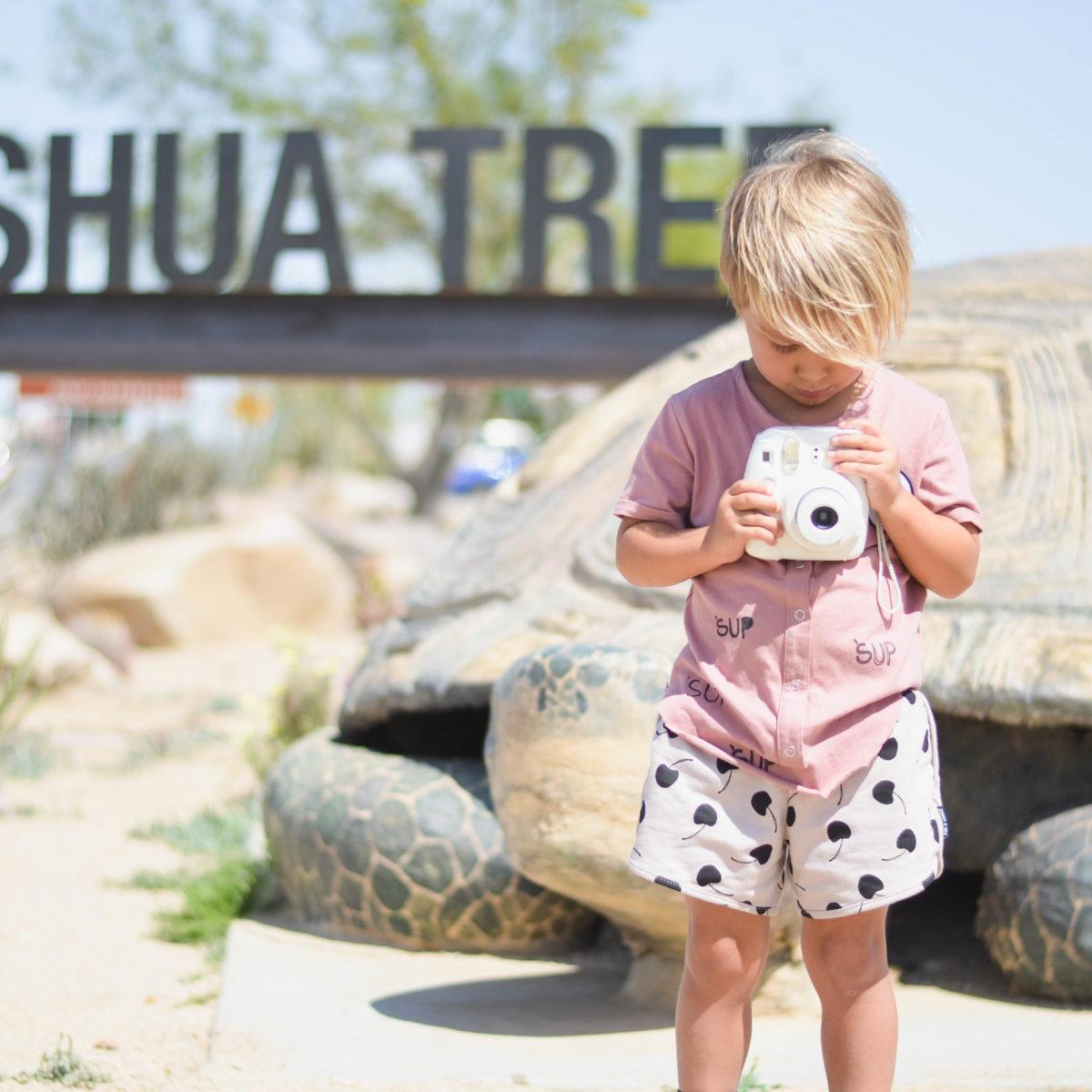 Tiny Travels: Joshua Tree