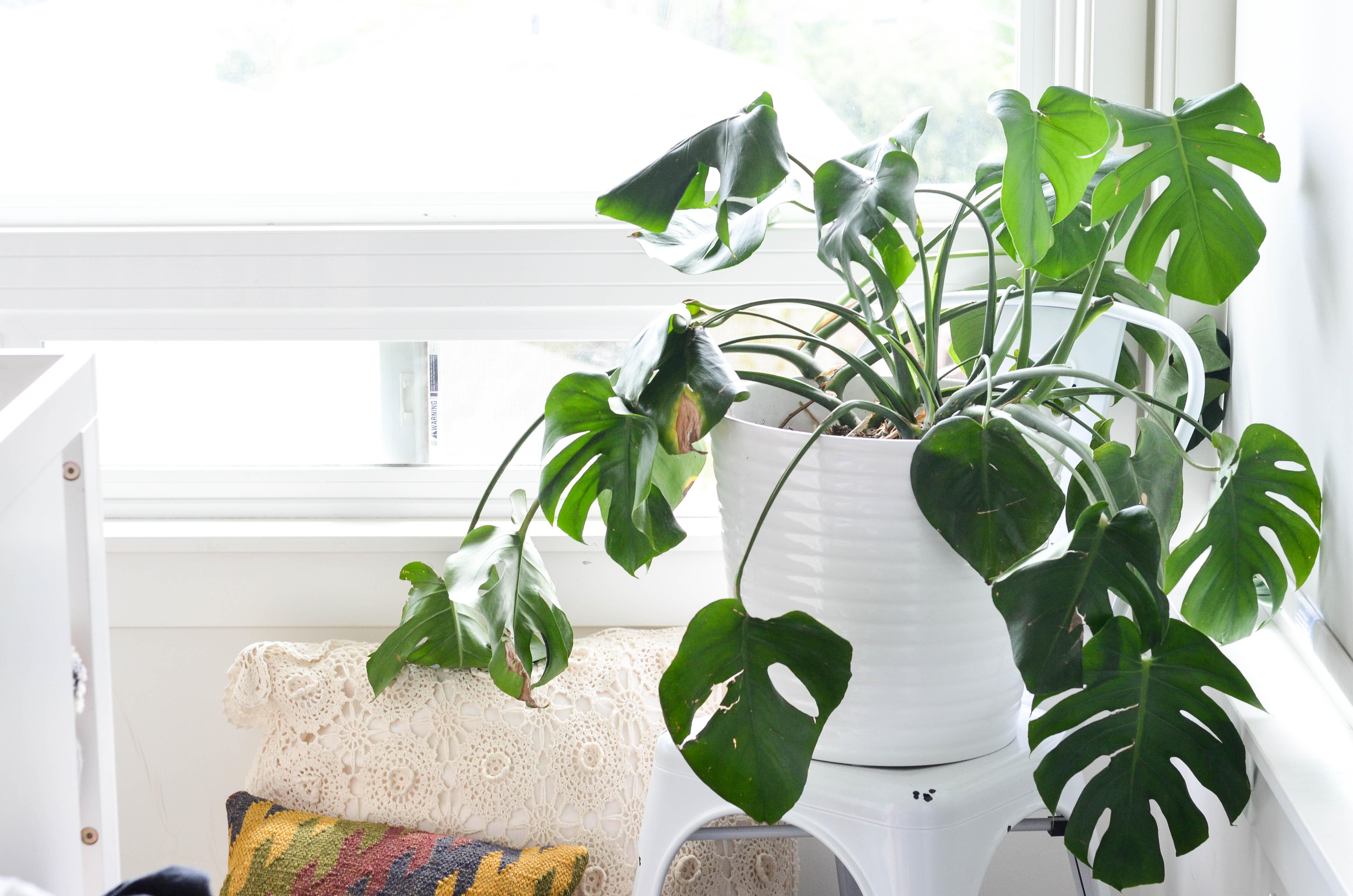 The Psychology Of a Joyful Home