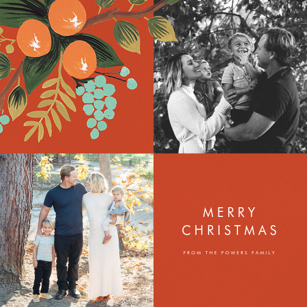 This Year's Online Christmas Cards
