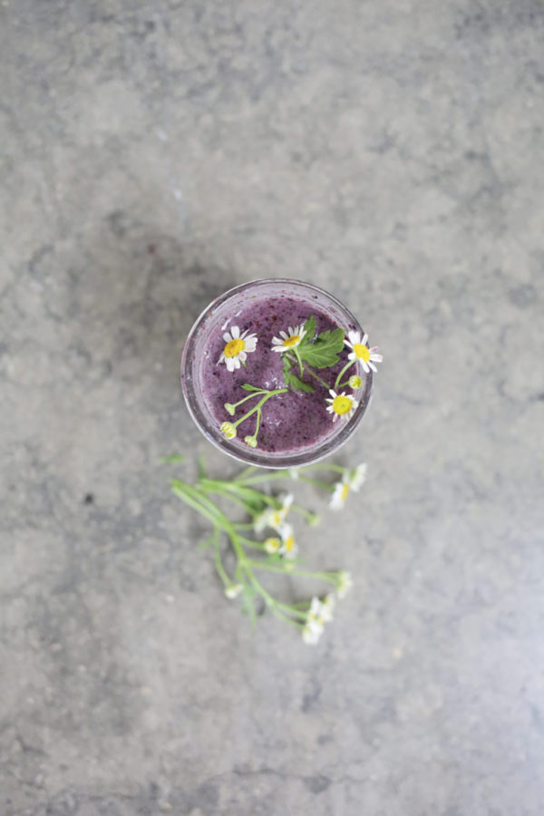 Smoothie Time: Adding Plant Based Protein To Our Diet